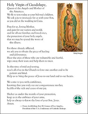 USCCB Prayer Card